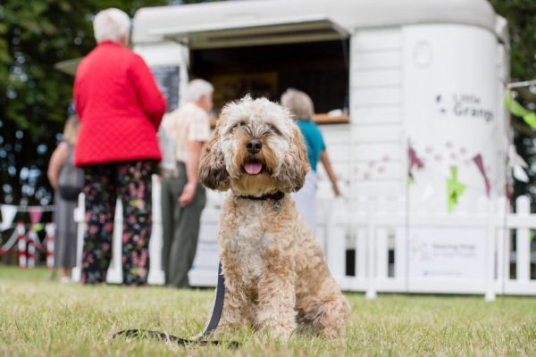 Little Grange welcomes dogs on leads